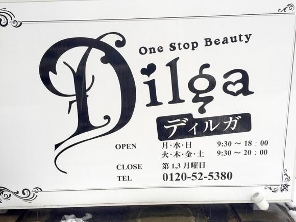 dilga2