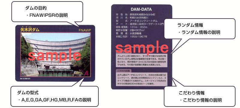 ダムカード サンプル