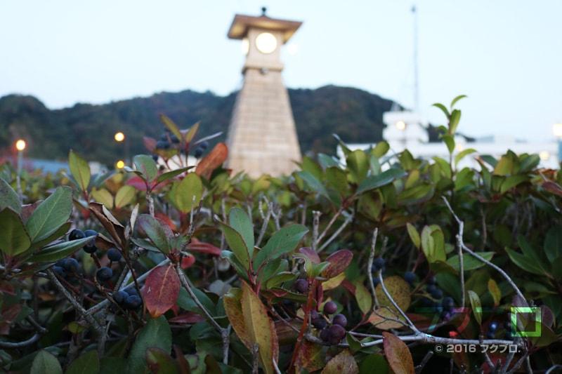 金ケ崎緑地 敦賀港「ミライエ」 イルミネーション点灯前(2)