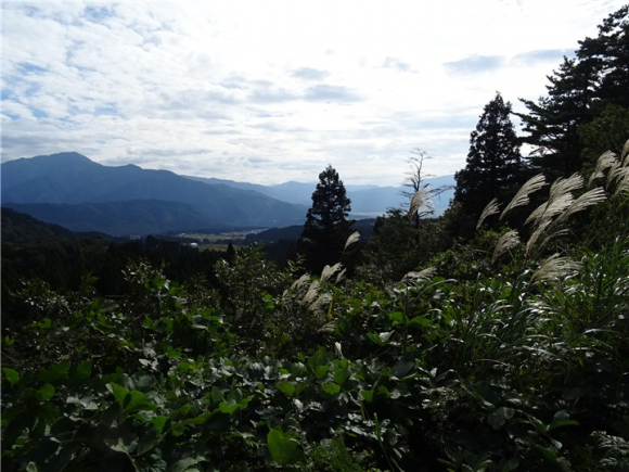 自然観察センター 外景
