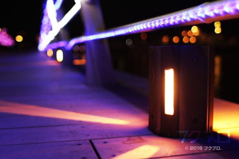 金ケ崎緑地 敦賀港「ミライエ」 イルミネーション点灯前(15)