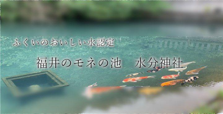 実は、福井にもあったモネの池!おいしい水が湧き出る神社「水分神社」