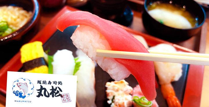 獲れたての魚で寿司を堪能!越前寿司処 丸松(まるまつ)